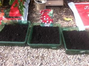 2014-05-08, Gardening club (1)