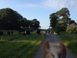 2014-06-21, riding in Apley Park (2)