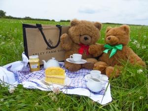 2014-07-03, Teddy Bears picnic photo