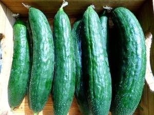Cucumber AWG