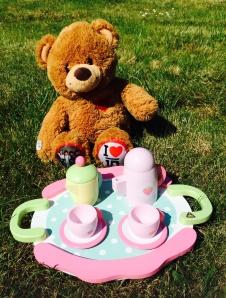 2014-08-05, Teddy Bears' picnic advert photo