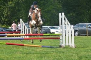 2014-08-07, Burwarton Show - VS&O riding (4) Sybilla