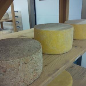 2014-09-11, Apley Cheshire Cheese 3