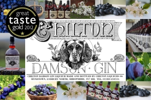 2014-9-29, Chilton Damson Gin profile, damson banner