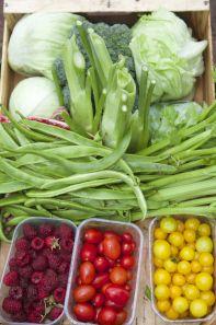 2014-09-19, Neil Harrison AWG photos (58) veg box, cropped