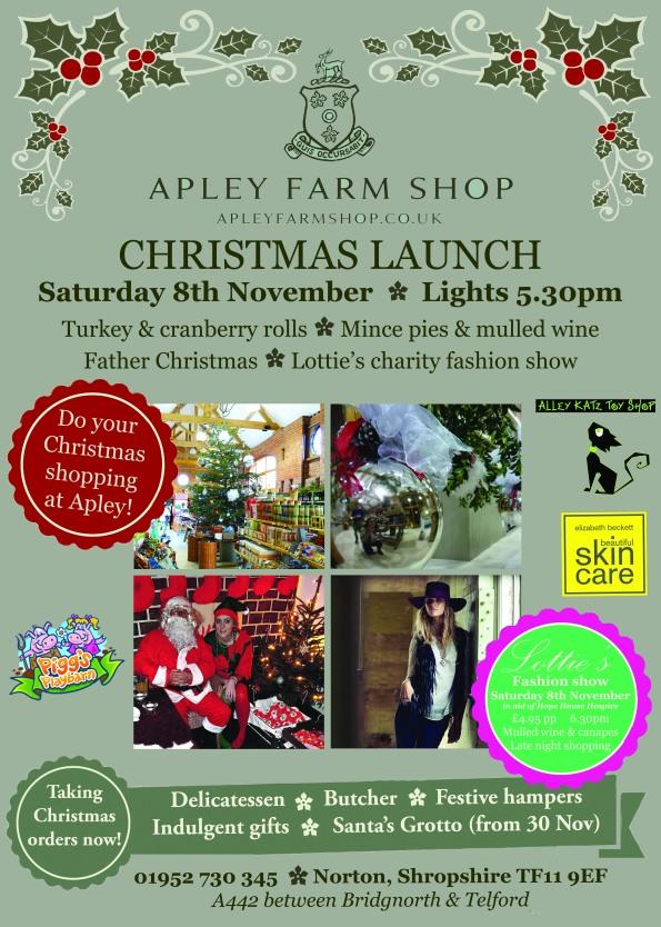 2014-11-08, Christmas Launch, A5 leaflet, final, jpeg