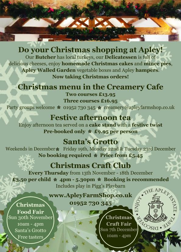 2014-11-05, Christmas generic leaflet back - final