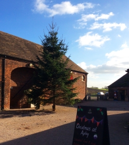 2014-11-05, Christmas tree in Apley Courtyard 2