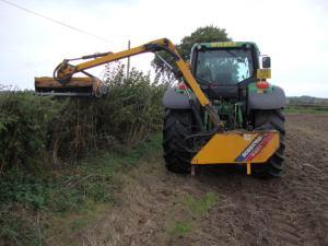 2014-11-06, Hedge cutting