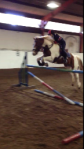 2015-01-09, H jumping 112cm on Scout at Wyke, snapshot cropped