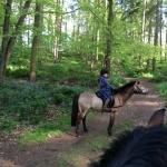 2015-05-16, V&H on Josh & Harry, Apley Park ride (7) (640x640)
