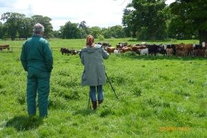 2015-05-30, Agata Summer film, Adrian & Agata cows