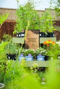 Apley Plant Centre