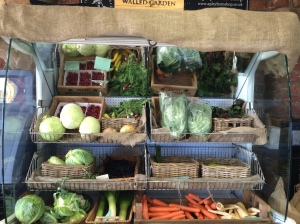 Apley Walled Garden veg - Phil's fridge (chiller)