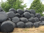 2015-08-09, Freshly made silage bales