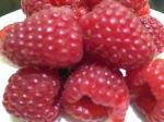 2015-08-12, AWG loganberries