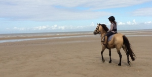 2015-08-15, Talacre beach ride, V on Josh, cropped (640x325)