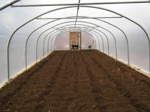 2015-09-09 New Polytunnel