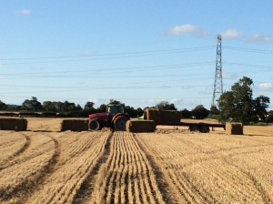 Apley harvesting - loading bales onto the trailer