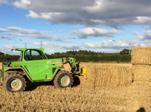 2015-09-12, Apley harvesting, green loader