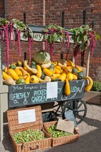 Apley Walled Garden squashes & pumpkins