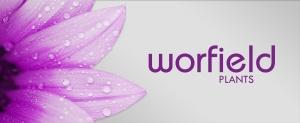 Worfield-easter-3