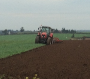 2015-10-11, Neighbour ploughing field