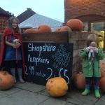 Spookley Pumpkin Festival
