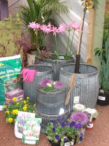 Apley Plant Centre - We Have All Required for Planting Your Containers