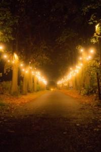 2015-11-03, AFS front drive festoon lights, Steve Watts