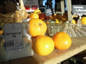 2014-01-09, Orange, grapefruit & potted plants display (6)