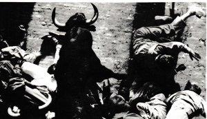2016-01-03, Running of the bull in Pamplona, Spain 001