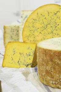 Cheese colston bassett Shropshire Blue