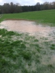 2016-02-08, Phil's rice paddi field