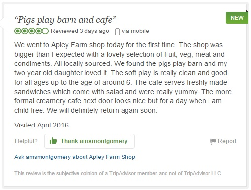 2016-04-28, Trip advisor 'Pigg's Playbarn & Cafe' 25th Apr
