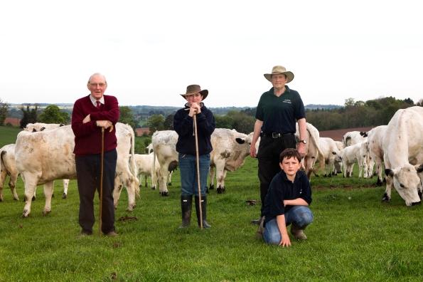 2016-05-08 Oldington Farm White Cows Family 3 Generations SW