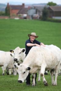 2016-05-08 Oldington Farm White Cows Paul SW