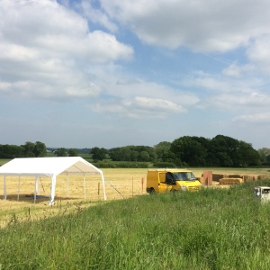 2016-06-03, Open Farm Sunday preparation