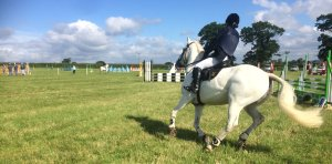 2016-06-25, Show jumping at Apley Farm Shop (1)