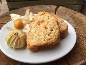 2016-07-25, Apricot & Ginger COTW (3) (640x480)