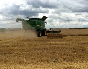 2016-07-31, Apley harvest begins