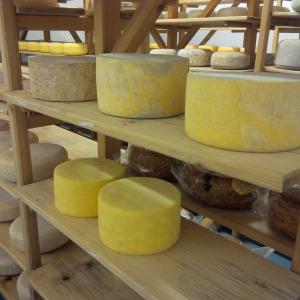 2014-09-11-apley-cheese-2