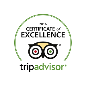 2016-06-08-trip-advisor-certificate-of-excellence-logo