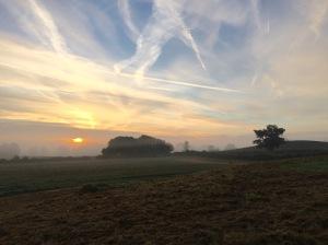 2016-10-21-apley-foggy-morning