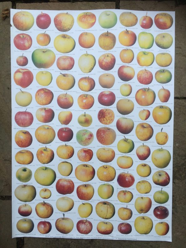 2016-10-24-apples-poster