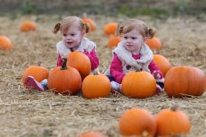 spookley-twins-sw