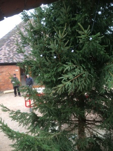 2016-11-08-afs-christmas-tree-being-put-up