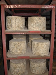 Montgomery's mature cheddar cheese