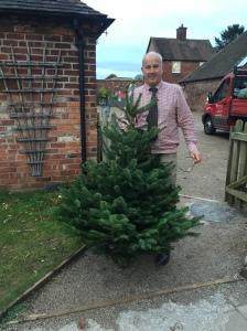2016-11-22-christmas-tree-arrivals-1