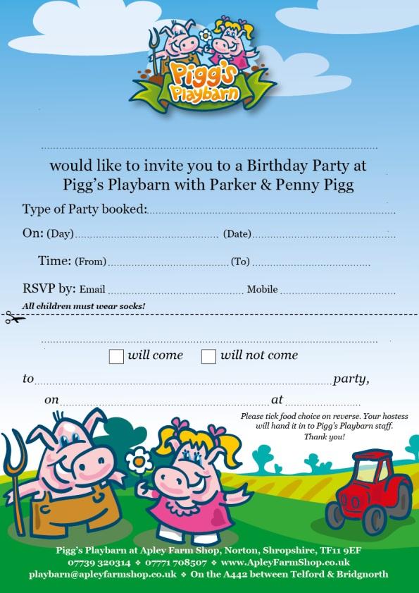 2016-11-23-playbarn-birthday-party-invitation-a5-final-jpeg
